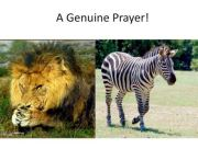 Genuine prayer